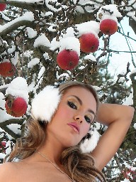 Winter apples